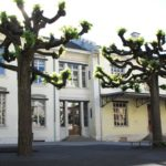Cité-Jonction, Mail, Plantaporrets et Carl-Vogt (Genève, GE)